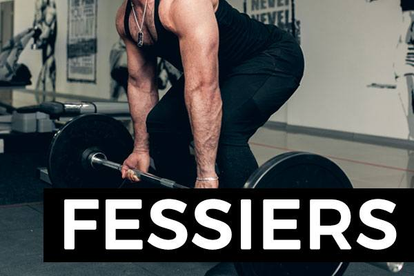 exercices fessiers