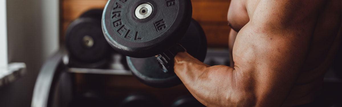 Musculation des biceps à la maison   meilleurs exercices et programme ec23bb296c9