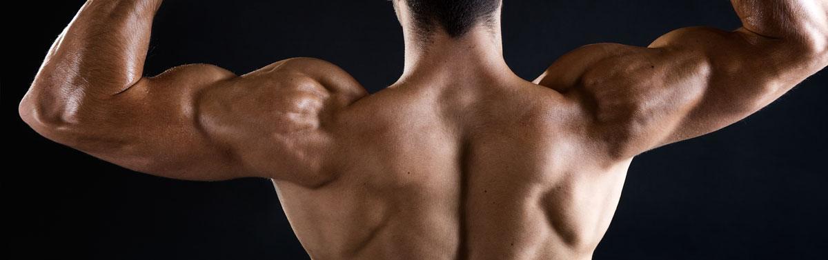 Musculation des triceps à la maison   meilleurs exercices et programme 6b006c15f07