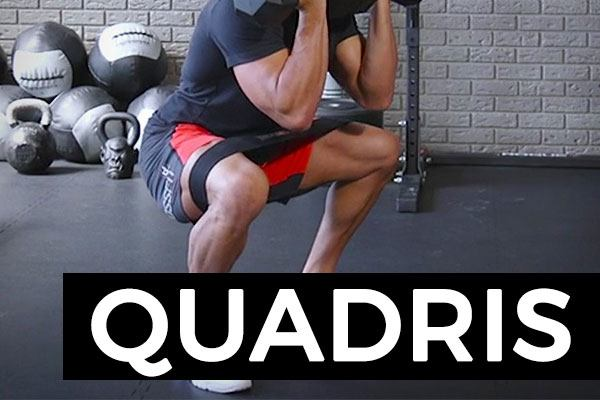 exercices quadriceps